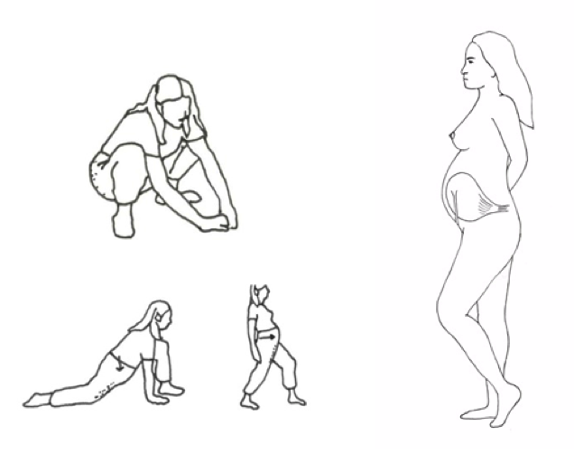 Selected illustrations from pregnancy massage curriculum developed by Leslie Stager R.N., L.M.T, 2012